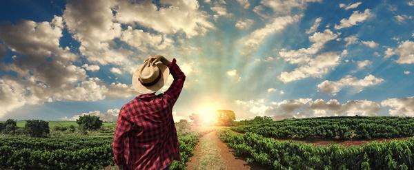 ograniczenia w obrocie ziemią rolną - zmiany 2019