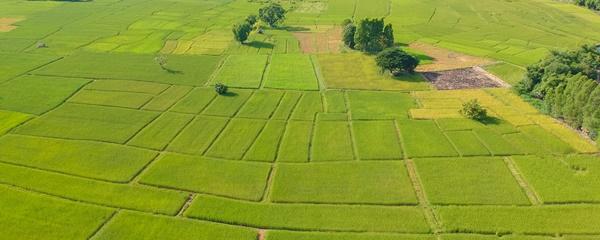 zniesienie współwłasności nieruchomości rolnej 2019